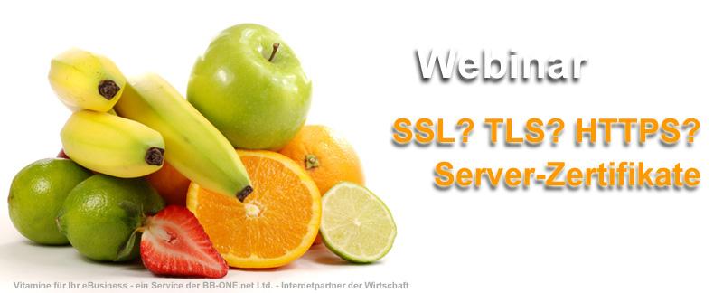 Server-Zertifikate - ein Muss für jede eBusiness Website