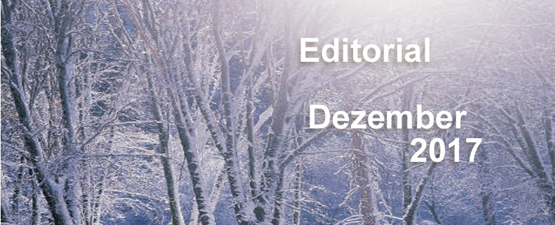 Editorial Dezember 2017