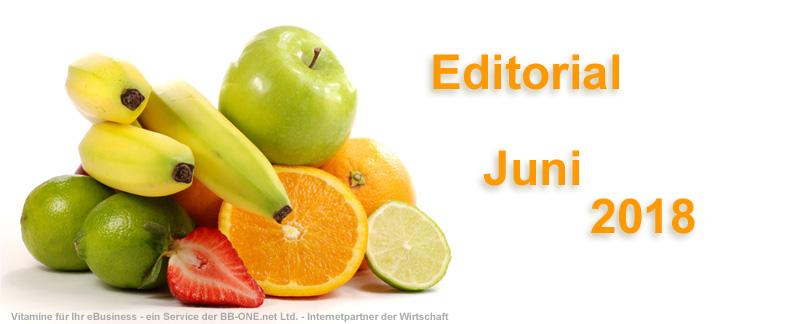 Edititorial des eBusiness Lotsen Berlin im Juni 2018