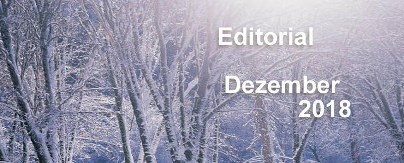 Editorial Dezember 2018 - Webinar-Übersicht und Jahresrückblick 2018