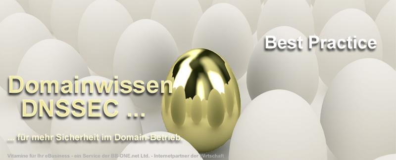 DNSSEC - der Sicherheitsdienst im Domain-Betrieb