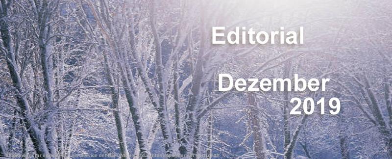 Editorial des eBusiness Lotsen Berlin Dezember 2019