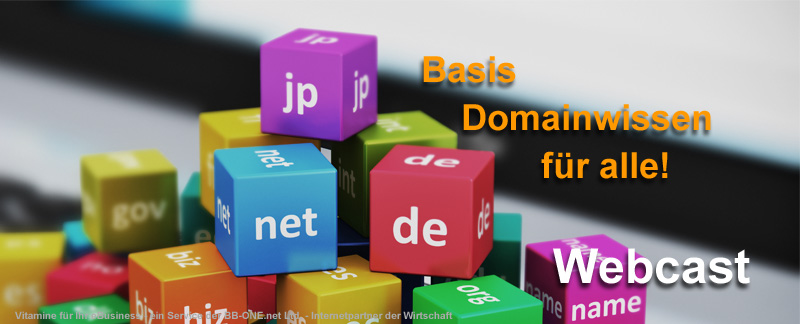 Grundlagen Webcast Domainwissen für alle Domainbesitzer