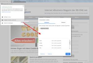 Cookie Einstellungen bei Browser Google Chorme