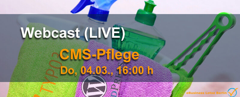 LIVE-Webcast Standards und Methoden der CMS-Pflege